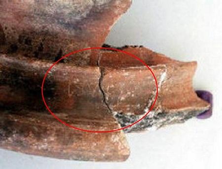 Tamil brahmi script Egypt
