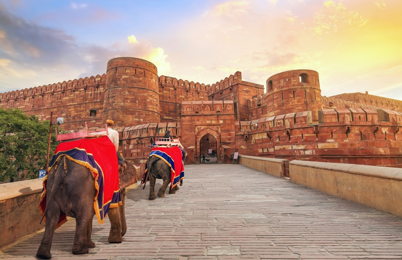 Agra Fort at sunrise with view of tourist enjoying elephant ride along the main entrance. Agra Fort is a UNESCO World Heritage site